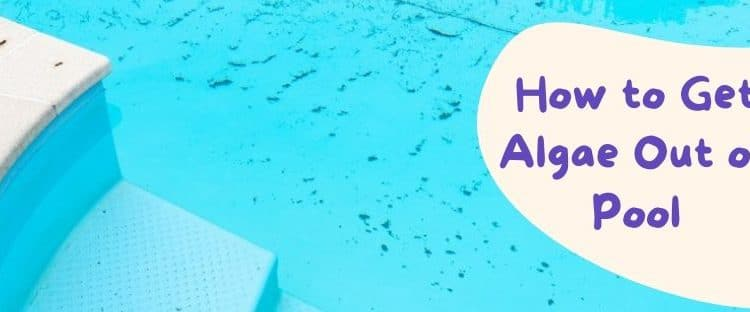 How to Get Algae Out of Pool- Effective & Manual Process